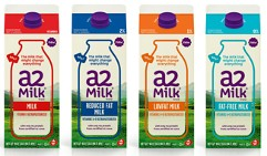 difference between a1 and a2 milk pdf