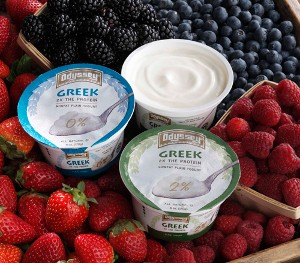 MADE-IN-WISCONSIN GREEK-STYLE YOGURT